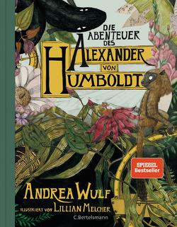 Die Abenteuer des Alexander von Humboldt von Werbeck,  Gabriele, Wulf,  Andrea
