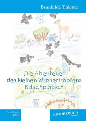 Die Abenteuer des kleinen Wassertropfens Klitschplatsch von Thieme,  Brunhilde