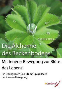 Die Alchemie des Beckenbodens von Haag,  Angelika, Xander,  Harald