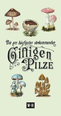 Die am häufigsten vorkommenden giftigen Pilze von Ruthammer,  Gerhard