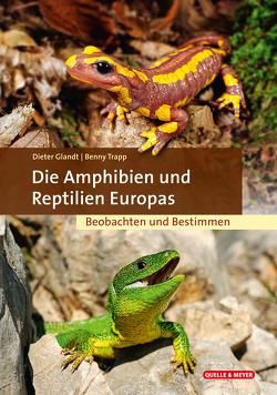 Die Amphibien & Reptilien Europas von Glandt,  Dieter, Trapp,  Benny