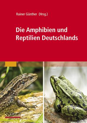 Die Amphibien und Reptilien Deutschlands von Günther,  Rainer
