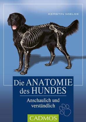 Die Anatomie des Hundes von Mielke,  Kerstin