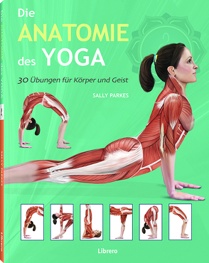 Die Anatomie des Yoga von Ashwell,  Ken