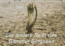 Die andere Seite des Dammer Bergsees (Tischkalender 2019 DIN A5 quer)