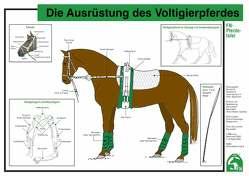 Die Ausrüstung des Voltigierpferdes von Deutsche Reiterliche Vereinigung e.V. (FN), Ehrenberger,  Silke, Lockert,  Ute, Rieder,  Ulrike