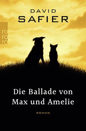 Die Ballade von Max und Amelie von Safier,  David