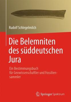 Die Belemniten des süddeutschen Jura von Schlegelmilch,  Rudolf