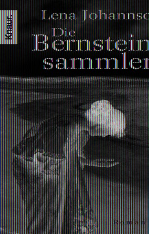 Die Bernsteinsammlerin von Johannson,  Lena