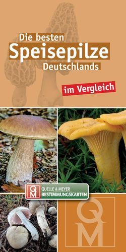 Die besten Speisepilze Deutschlands im Vergleich von Quelle & Meyer Verlag