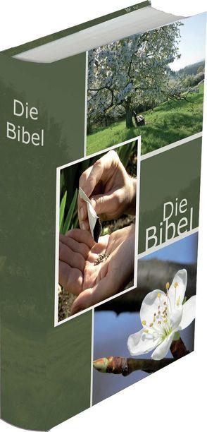 Die Bibel – größere Taschenbibel (Wiese) von Christliche Schriftenverbreitung,  e.V.