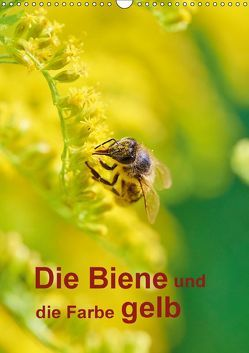 Die Biene und die Farbe gelb (Wandkalender 2018 DIN A3 hoch) von Bangert,  Mark