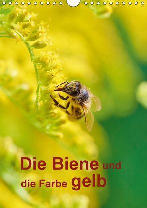 Die Biene und die Farbe gelb (Wandkalender 2018 DIN A4 hoch) von Bangert,  Mark