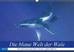Die blaue Welt der Wale (Wandkalender 2019 DIN A3 quer) von Travelpixx.com