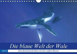 Die blaue Welt der Wale (Wandkalender 2019 DIN A4 quer) von Travelpixx.com