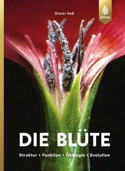 Die Blüte von Hess,  Dieter