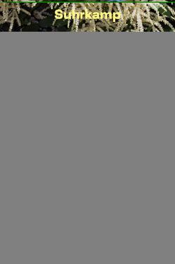 Die Blüten der Stadt von Hanske,  Paul-Philipp, Werner,  Christian