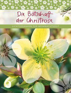 Die Botschaft der Christrose von Osenberg-van Vugt,  Ilka (Hrsg)