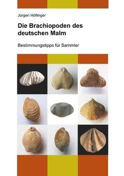 Die Brachiopoden des deutschen Malm von Höflinger,  Jürgen