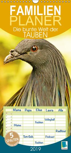 Die bunte Welt der Tauben (Wandkalender 2019 PRO_49_format hoch) von CALVENDO