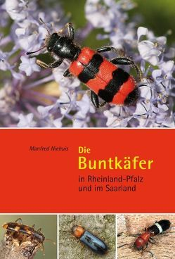 Die Buntkäfer in Rheinland-Pfalz und im Saarland von Niehuis,  Manfred