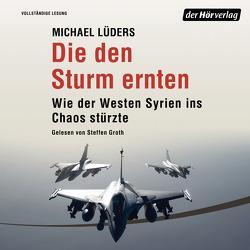 Die den Sturm ernten von Groth,  Steffen, Lüders,  Michael