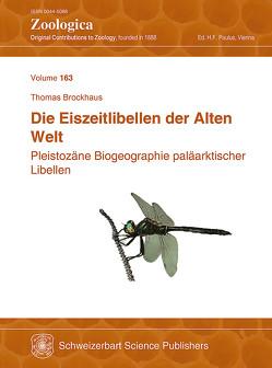 Die Eiszeitlibellen der Alten Welt von Brockhaus,  Thomas, Paulus,  Hannes F.