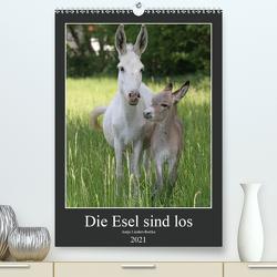 Die Esel sind los (Premium, hochwertiger DIN A2 Wandkalender 2021, Kunstdruck in Hochglanz) von Lindert-Rottke,  Antje