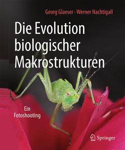 Die Evolution biologischer Makrostrukturen von Glaeser,  Georg, Nachtigall,  Werner