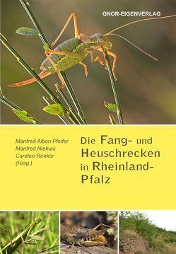 Die Fang- und Heuschrecken in Rheinland-Pfalz von Niehuis,  Manfred, Pfeifer,  Alban, Renker,  Carsten