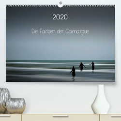 Die Farben der Camargue (Premium, hochwertiger DIN A2 Wandkalender 2020, Kunstdruck in Hochglanz) von Rosemann,  Sigrid