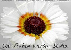 Die Farben weißer Blüten (Wandkalender 2019 DIN A2 quer) von Knodt,  Birgit