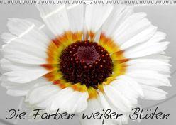 Die Farben weißer Blüten (Wandkalender 2019 DIN A3 quer) von Knodt,  Birgit