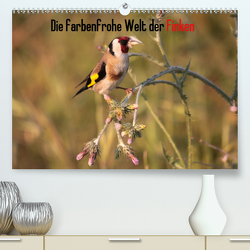Die farbenfrohe Welt der Finken (Premium, hochwertiger DIN A2 Wandkalender 2020, Kunstdruck in Hochglanz) von Erlwein,  Winfried