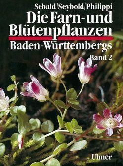 Die Farn- und Blütenpflanzen Baden-Württembergs Band 2 von Philippi,  Georg, Sebald,  Oskar, Seybold,  Siegmund