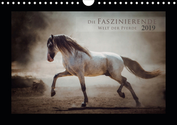Die Faszinierende Welt der Pferde (Wandkalender 2019 DIN A4 quer) von Mischnik,  Sabrina