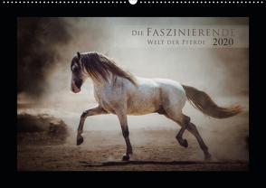 Die Faszinierende Welt der Pferde (Wandkalender 2020 DIN A2 quer) von Mischnik,  Sabrina