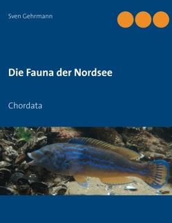 Die Fauna der Nordsee von Gehrmann,  Sven