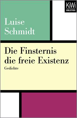 Die Finsternis die freie Existenz von Schmidt,  Luise