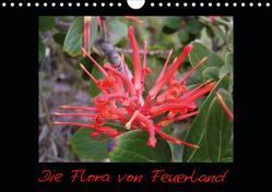 Die Flora von Feuerland (Wandkalender 2020 DIN A4 quer) von Kreissig,  Katharina