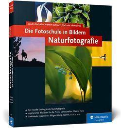 Die Fotoschule in Bildern. Naturfotografie von Bartocha,  Sandra, Bollmann,  Werner, Jakubowski,  Radomir