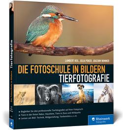 Die Fotoschule in Bildern. Tierfotografie von Heil,  Lambert, Poker,  Julia, Wimmer,  Joachim