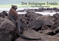 Die Galapagos Inseln – Das Naturparadies (Tischkalender 2021 DIN A5 quer) von Akrema-Photography, Neetze