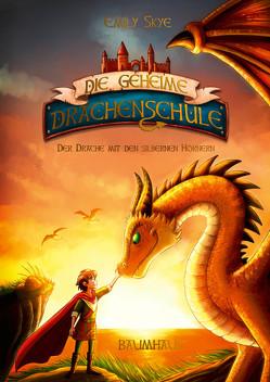 Die geheime Drachenschule – Der Drache mit den silbernen Hörnern von Nöldner,  Pascal, Skye,  Emily