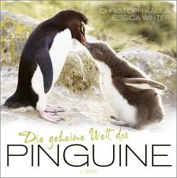 Die geheime Welt der Pinguine von Kaula,  Christoph, Winter,  Jessica