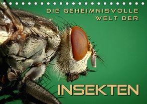 Die geheimnisvolle Welt der Insekten (Tischkalender 2018 DIN A5 quer) von Bleicher,  Renate