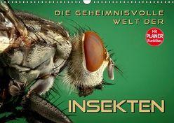 Die geheimnisvolle Welt der Insekten (Wandkalender 2019 DIN A3 quer)