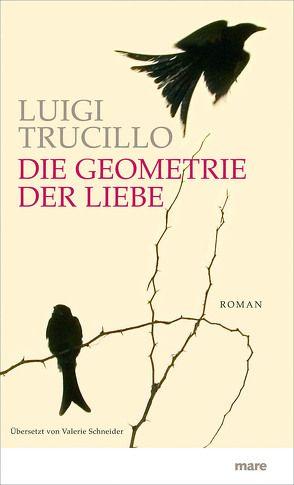 Die Geometrie der Liebe von Schneider,  Valerie, Trucillo,  Luigi