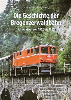 Die Geschichte der Bregenzerwaldbahn von Fink,  Norbert