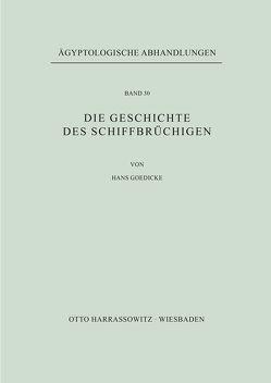 Die Geschichte des Schiffbrüchigen von Goedicke,  Hans